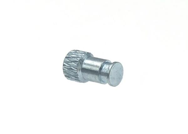 Arretierstift für Federband Ø 3,82 mm an Feuerschutztür und